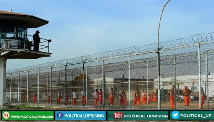 Jail guards charged with falsifying records