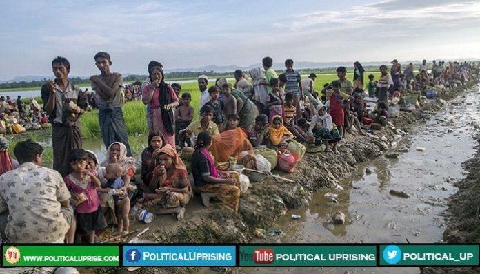Rohingya genocide took Myanmar to ICJ
