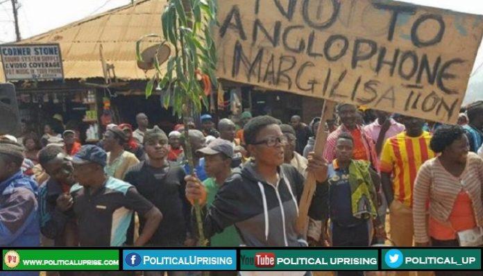 Cameroon's parliament grants