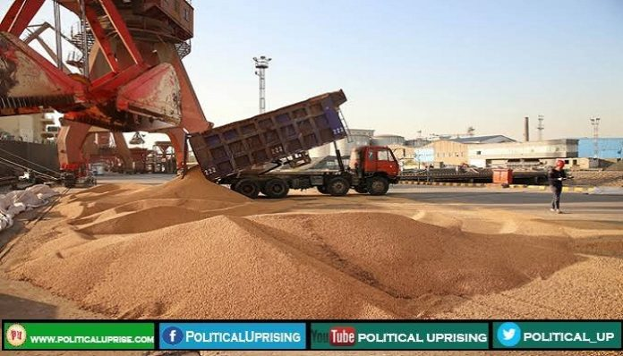 China approves two GM crops for import from US